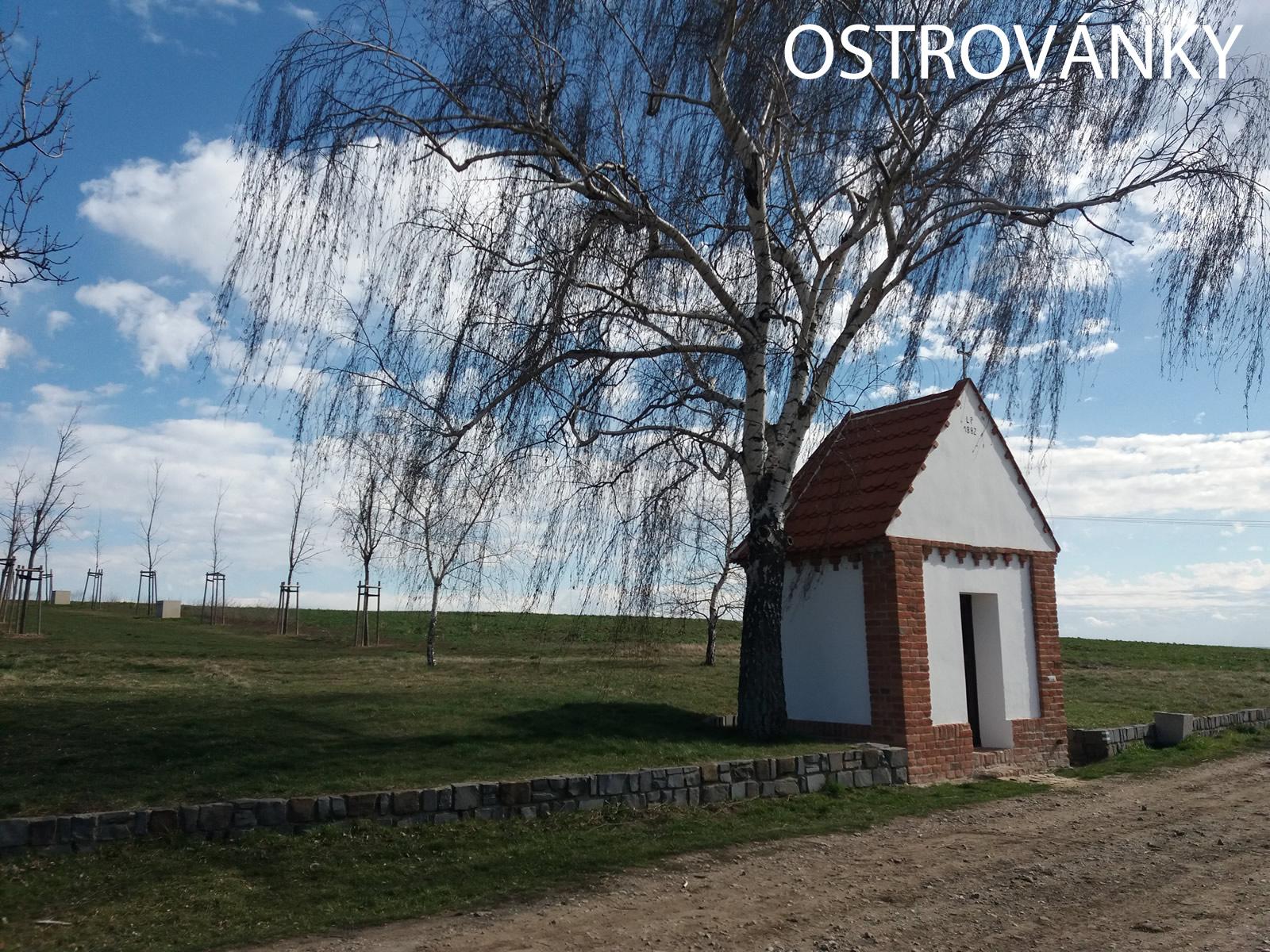 6-Ostrovanky1